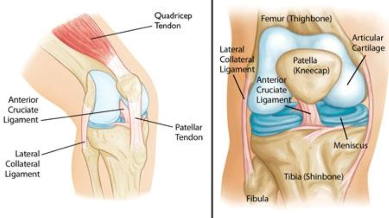 knee pain solution singapore
